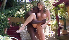 Beautiful Exotic Pussy Rocco anubis Sexy big black cock